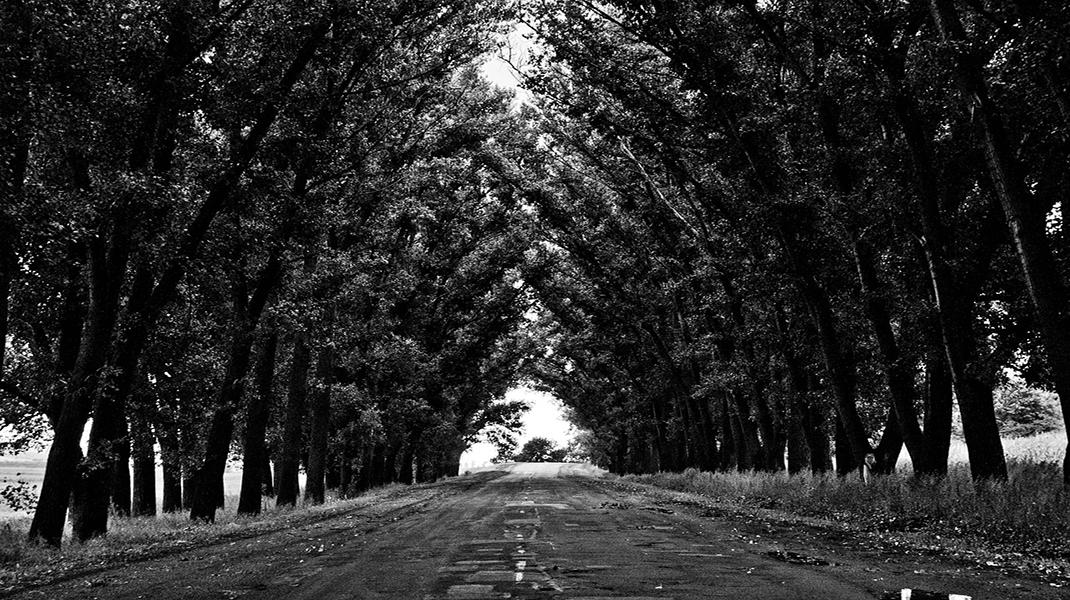 camino-oscuro-largo- excelencia