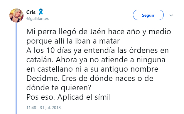 La perra de una tuitera que entendía el catalán. - Sr.Brandon Agencia